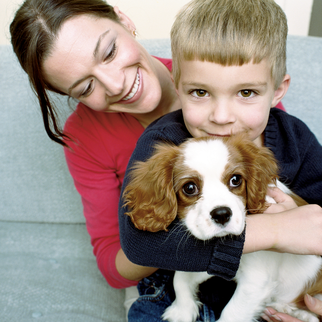 Envion mother son dog purifier